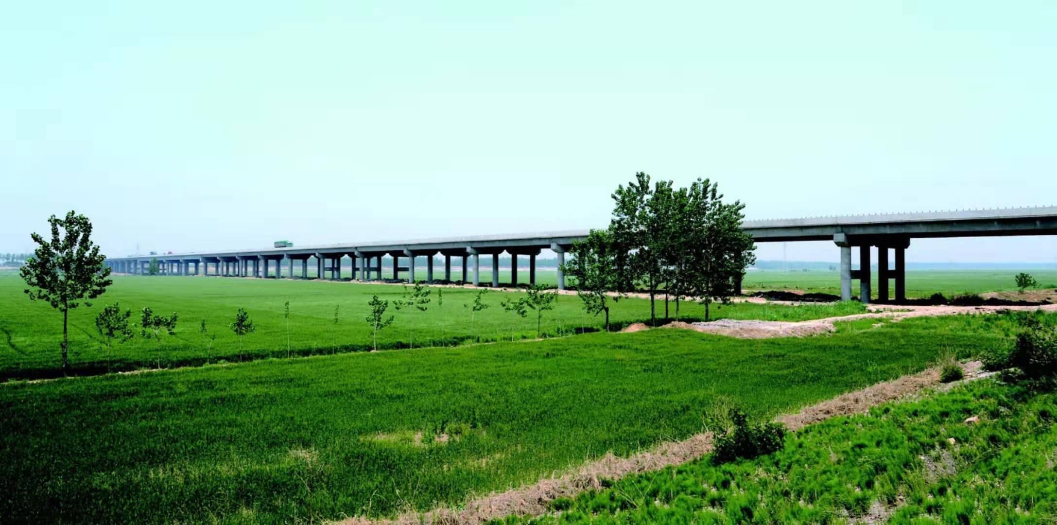 204国道连云港段沭河特大桥工程——荣获江苏省最高质量奖项扬子杯奖